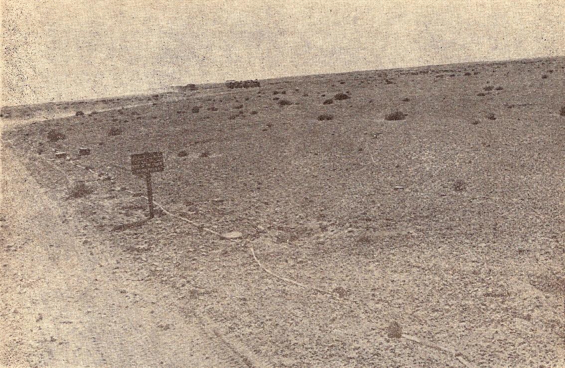 À Bir-Hakeim – novembre 1955