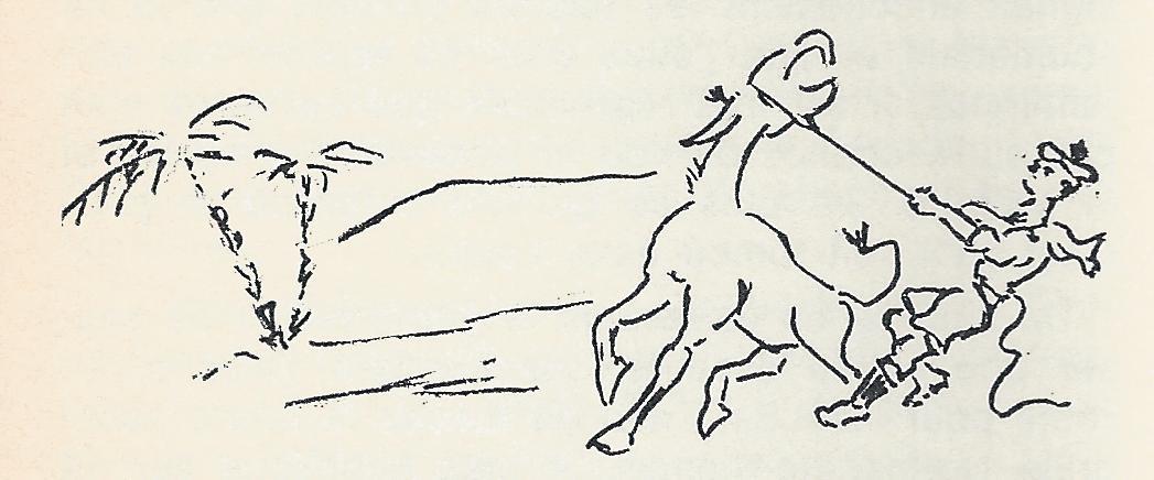 Des marins et des mules…, par Jacques Bauche